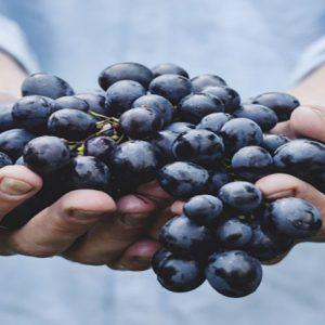 ۱۱ میوه که باعث شادابی پوست می شود