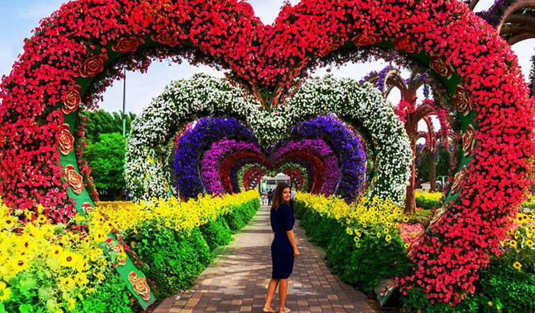 جاهای دیدنی دبی - باغ گل معجزه، خاص ترین معجزه کویر دبی
