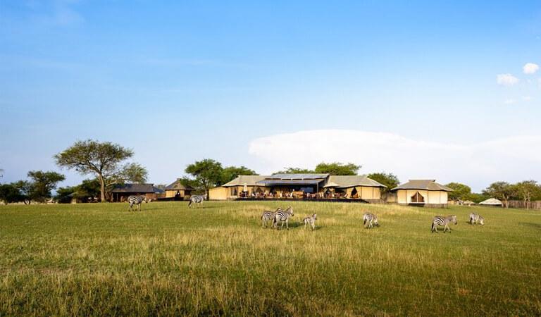 بهترین هتل های جهان - اردوگاه چادر سینگیتا سابورا در تانزانیا
